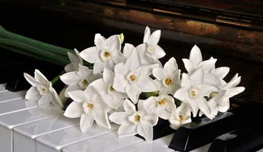 洋楽ロック、ピアノの旋律が美しい名曲10選